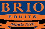 Soporte en la elaboración de la Memoria de Sostenibilidad de la empresa Brio Fruits