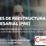 Planes de Reestructuración Camara Valencia coordina